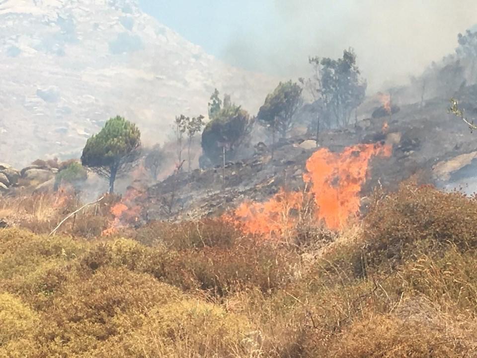 Marmara Adası'ndaki yangın yerleşim yerlerine kadar geldi 1
