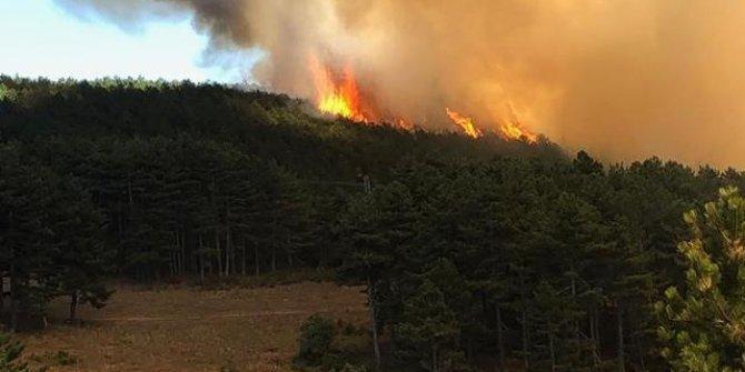 Marmara Adası'ndaki yangın yerleşim yerlerine kadar geldi