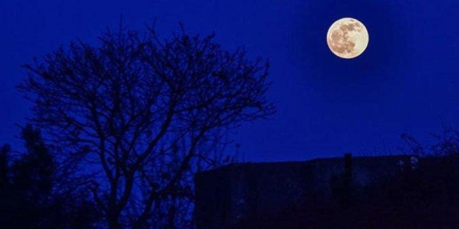 Ay tutulması burçları nasıl etkileyecek?