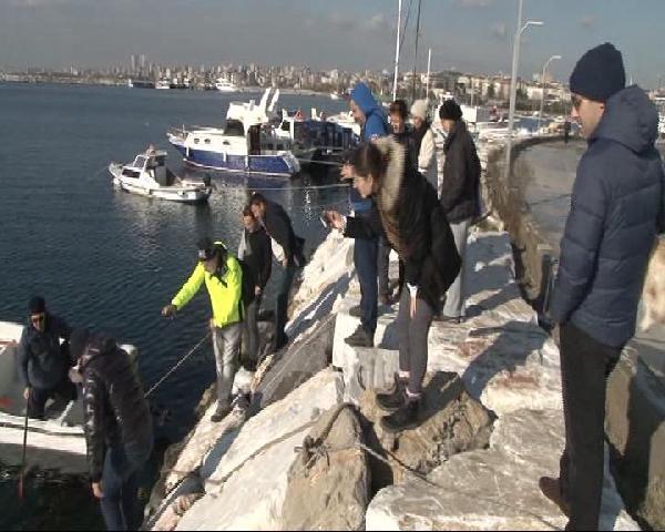 İstanbul'da sahile vurdular görenler şaştı kaldı! 6