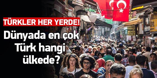 Dünyada En Çok Türk Hangi Ülkede Yaşıyor