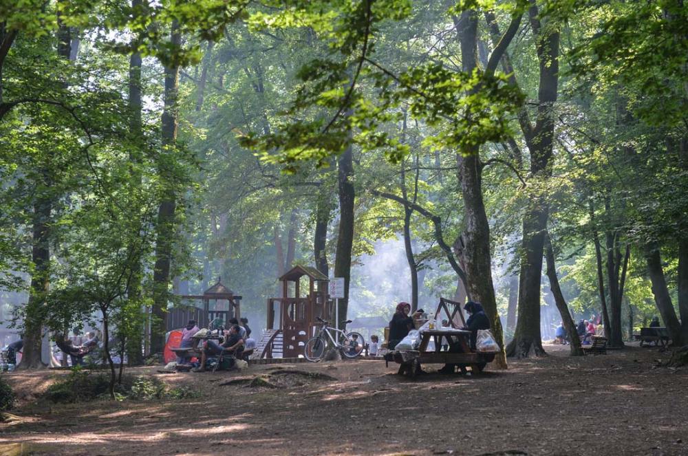 İstanbullular piknik yapmak için Belgrad Ormanına akın etti 4