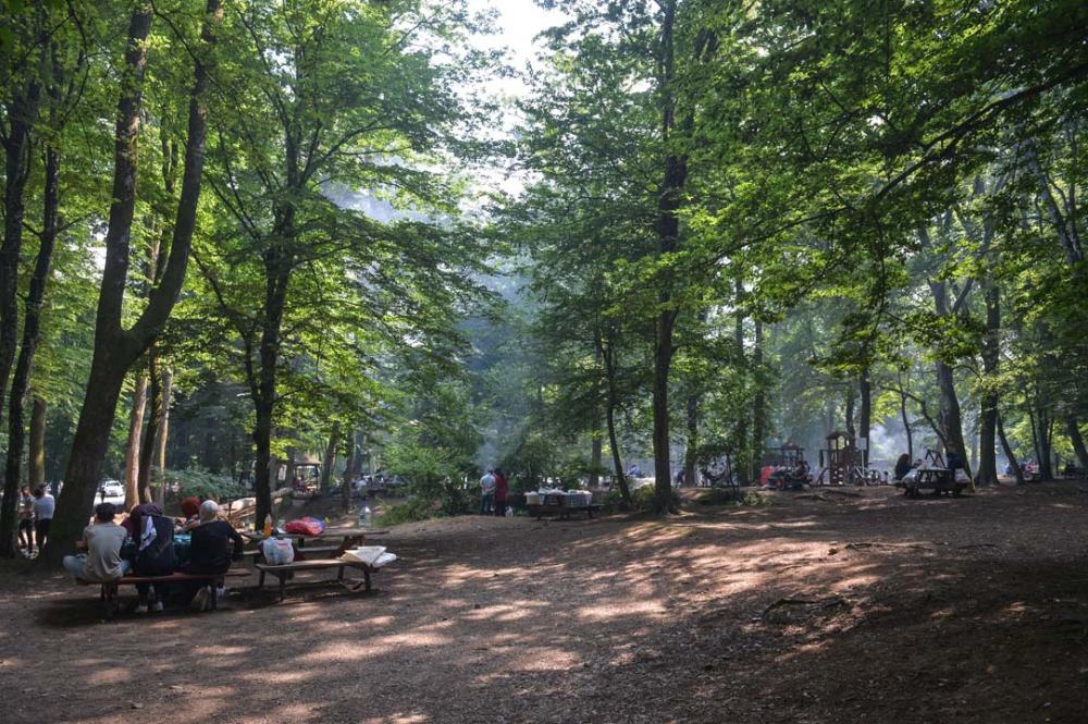 İstanbullular piknik yapmak için Belgrad Ormanına akın etti 6