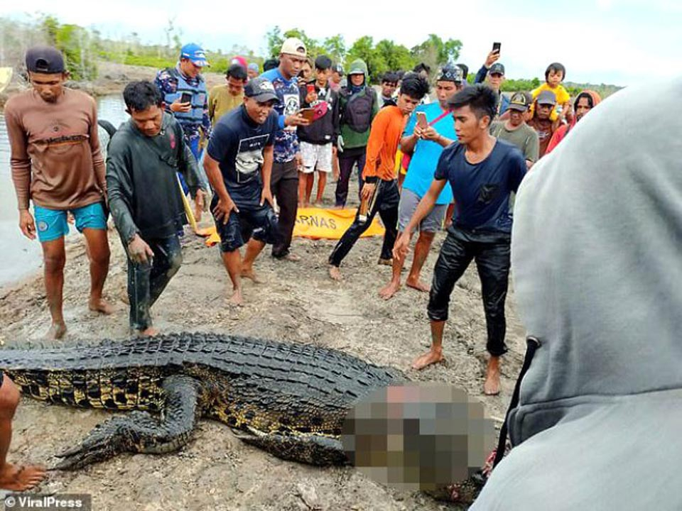 Endonezya'da dehşet! Timsahın midesinden kadın çıkarıldı 1