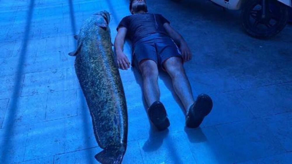 İznik Gölü'nde yakalandı! Tam 1,5 metre boyunda 6