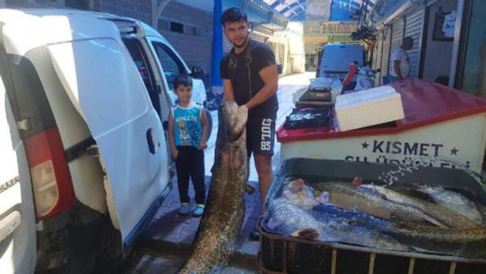 İznik Gölü'nde yakalandı! Tam 1,5 metre boyunda 8