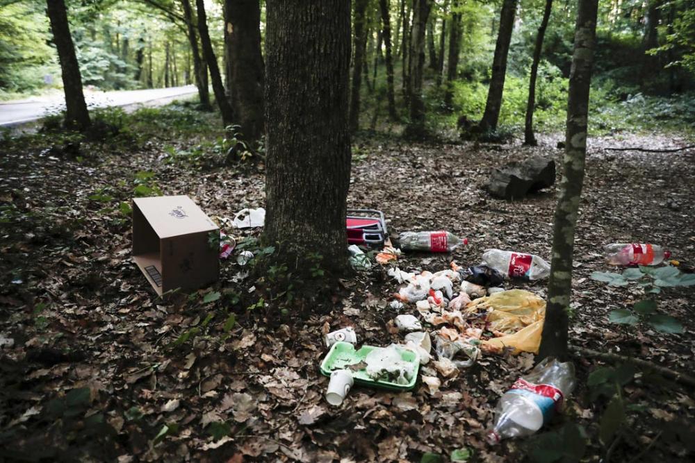Belgrad Ormanı'nda utandıran görüntüler! Buldukları gibi bırakmadılar 1