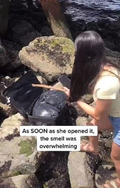 Sahilde buldukları bavuldan ceset parçaları çıktı! 2