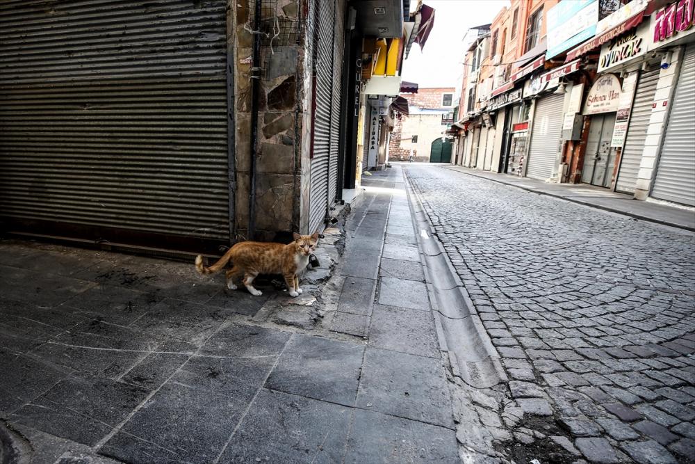 Sokağa çıkma kısıtlamasında İstanbul sessizliğe büründü 10