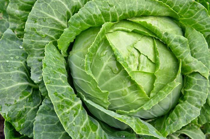 Sağlıklı görünen bu besinlere dikkat! 15