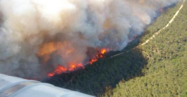 Çanakkale alev alev yanıyor! Vali Aktaş'tan yeni açıklama 9