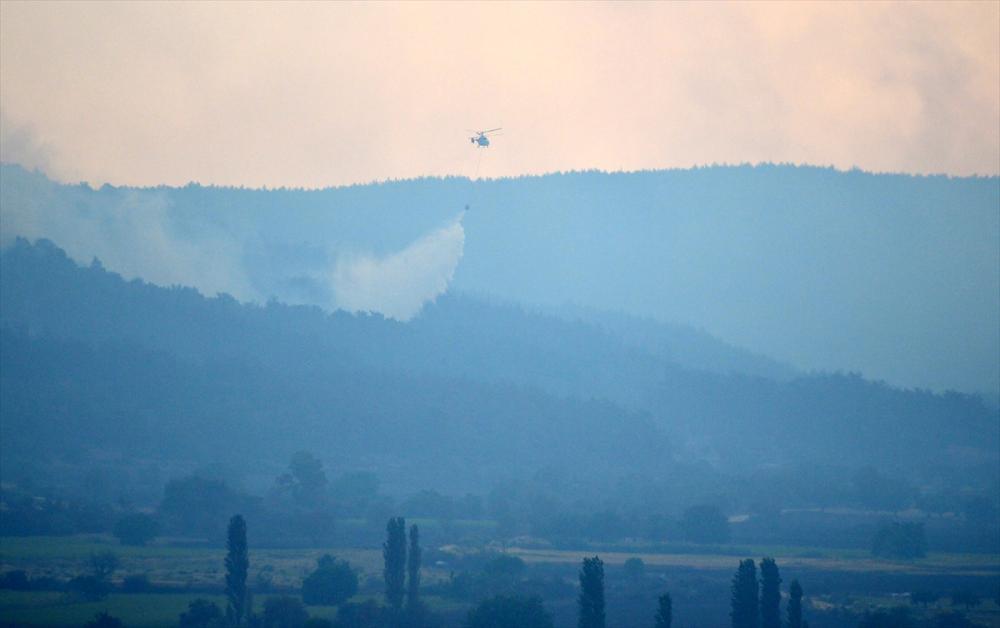 Çanakkale'deki orman yangını binlerce ağacı yok etti 6