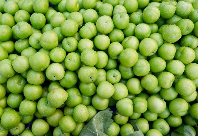 Yeşil erik yemenin sağlığımıza 11 faydası 1