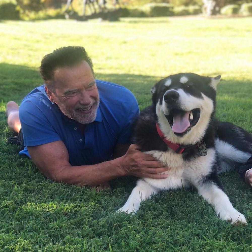 """Patrick Schwarzenegger açıkladı: """"Babam kendini terminatör sanıyor"""" 1"""