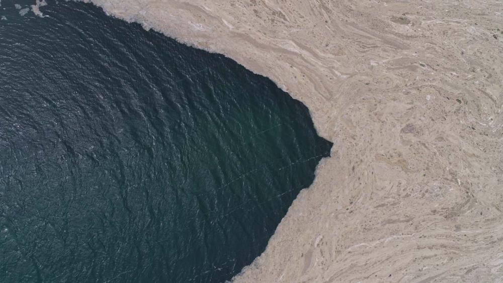 Marmara Denizi'ndeki tehlike devam ediyor: İstanbul, Kocaeli, Bursa, Tekirdağ... İşte deniz salyasının etkileri... 12