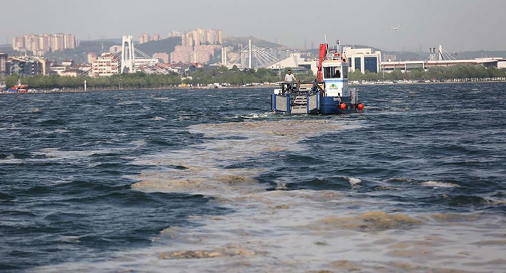 Marmara Denizi'ndeki tehlike devam ediyor: İstanbul, Kocaeli, Bursa, Tekirdağ... İşte deniz salyasının etkileri... 17