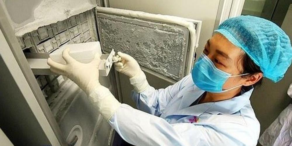 Koronavirüs nasıl ortaya çıktı? Çarpıcı araştırma ortaya koydu! 2