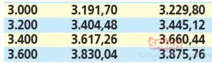 Emekliye temmuz zammı için geri sayım başladı: İşte zamdan sonra en düşük ve en yüksek emekli maaşları! 15