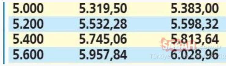 Emekliye temmuz zammı için geri sayım başladı: İşte zamdan sonra en düşük ve en yüksek emekli maaşları! 18