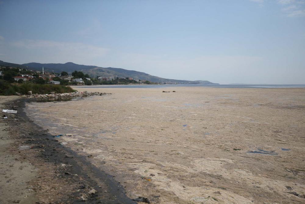 Marmara'da durum kötüleşiyor!  Müsilaj (deniz salyası) , Balıkesir Erdek'i esir aldı! 1