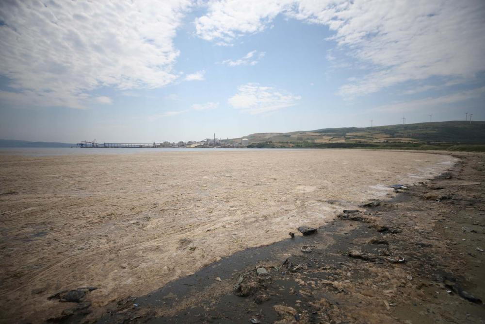 Marmara'da durum kötüleşiyor!  Müsilaj (deniz salyası) , Balıkesir Erdek'i esir aldı! 3