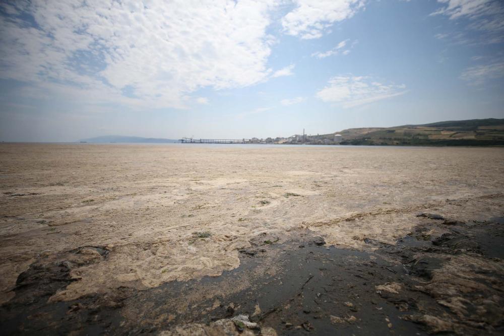 Marmara'da durum kötüleşiyor!  Müsilaj (deniz salyası) , Balıkesir Erdek'i esir aldı! 5