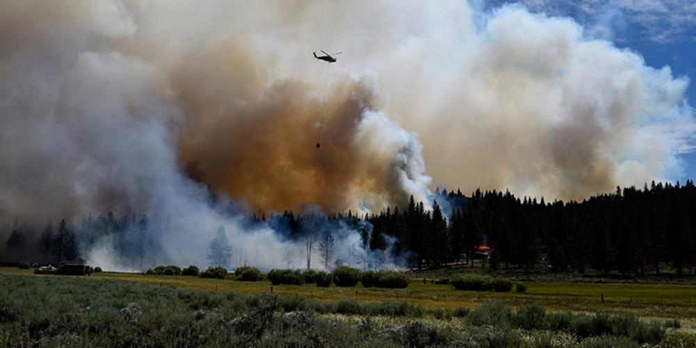 ABD'de yangın felaketi! New York, Los Angeles ve Chicago kentlerinin toplamı büyüklüğünde alan kül oldu 1