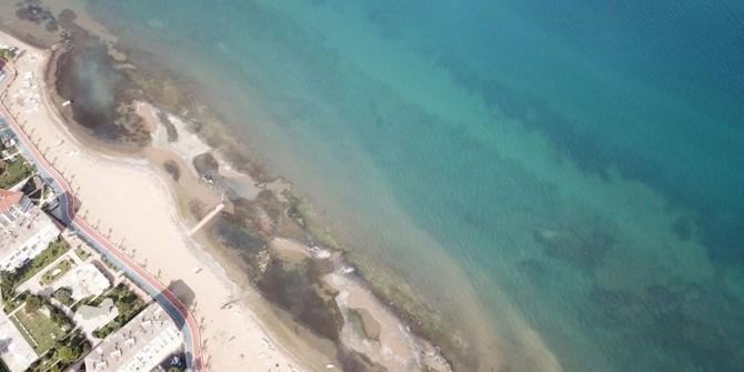 Yalova'da deniz suyu 25 metre çekildi! Peki deniz neden geri çekilir?