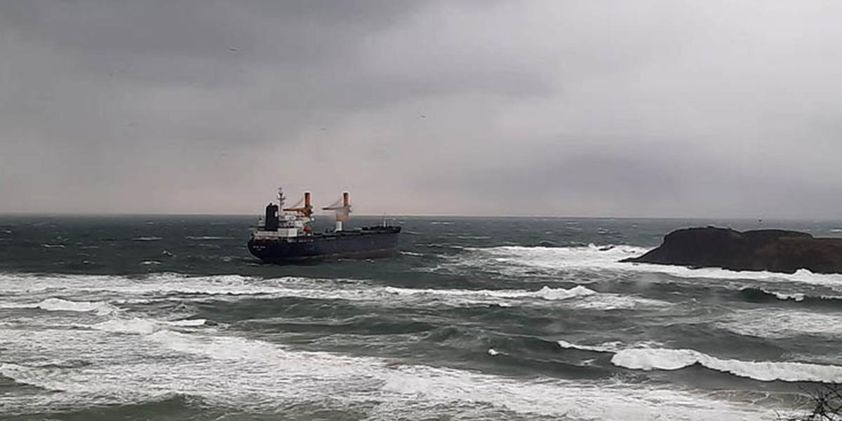 Kargo gemisi Beykoz açıklarında karaya oturdu!