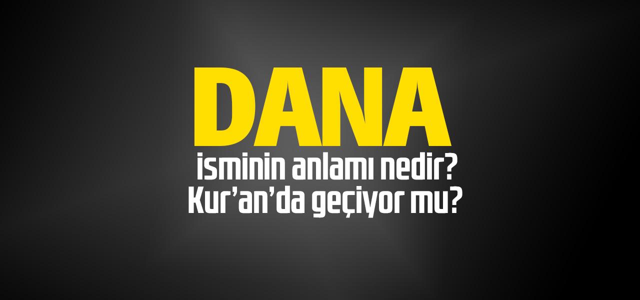 Dana isminin anlamı nedir, Dana ne demektir? Kuranda geçiyor mu?