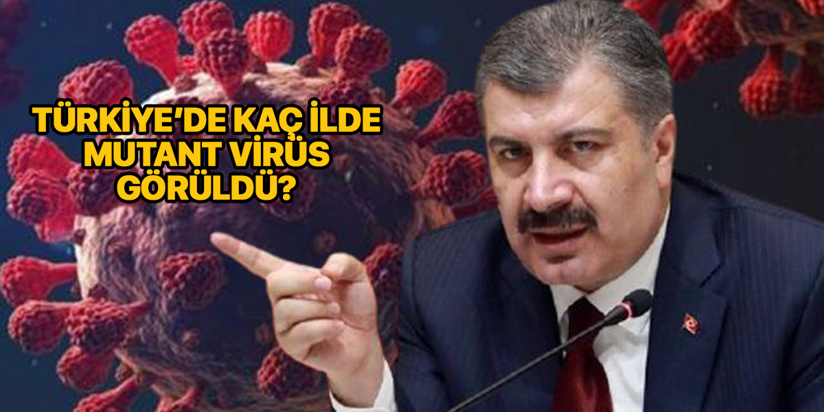 Mutant virüslerin sayısı ne kadar? | Mutant virüs Türkiye'de kaç ilde var? | Mutant virüs hangi illerde?