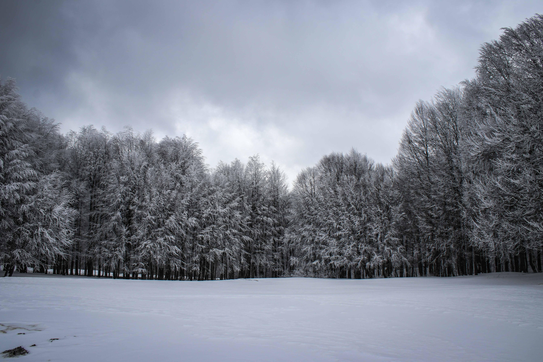 Domaniç Dağları Nisan karıyla beyaza büründü, Kartpostallık görüntüler oluştu