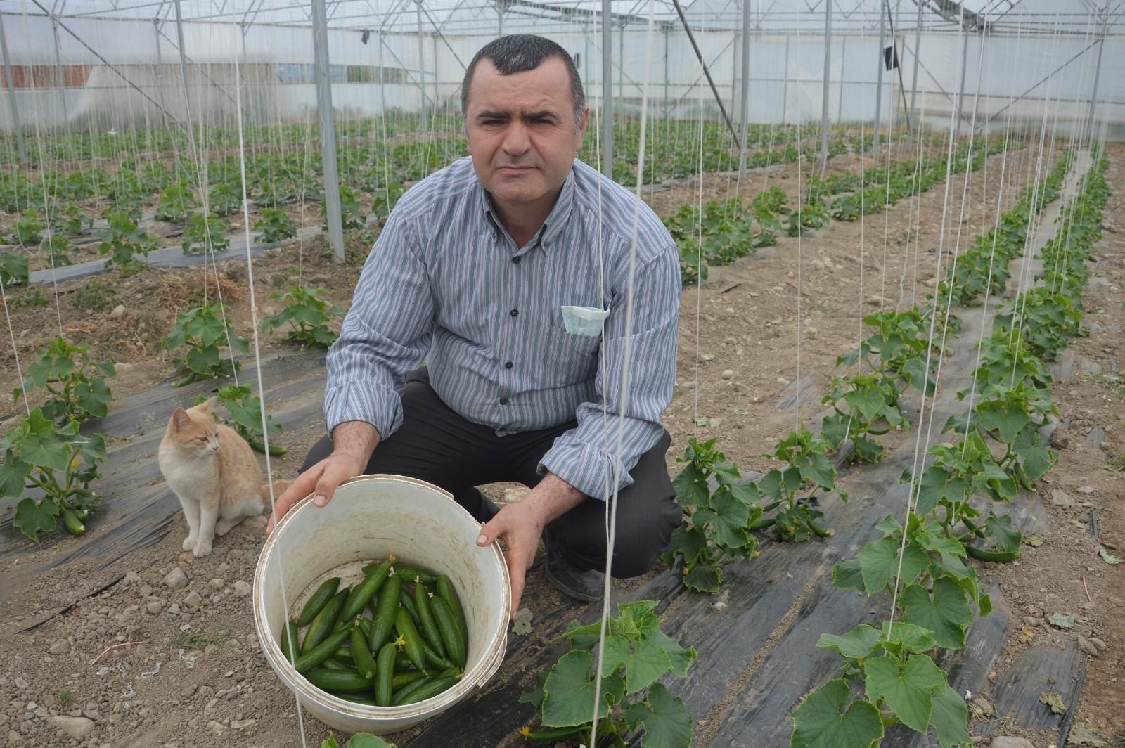 İstanbul'dan sıkıldı, öğretmenliği bırakarak hayaline koştu: Çiftlik kurdu!