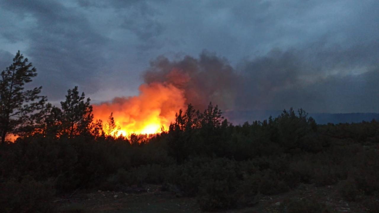 Bakan Pakdemirli'den Muğla yangınına ilişkin açıklama!
