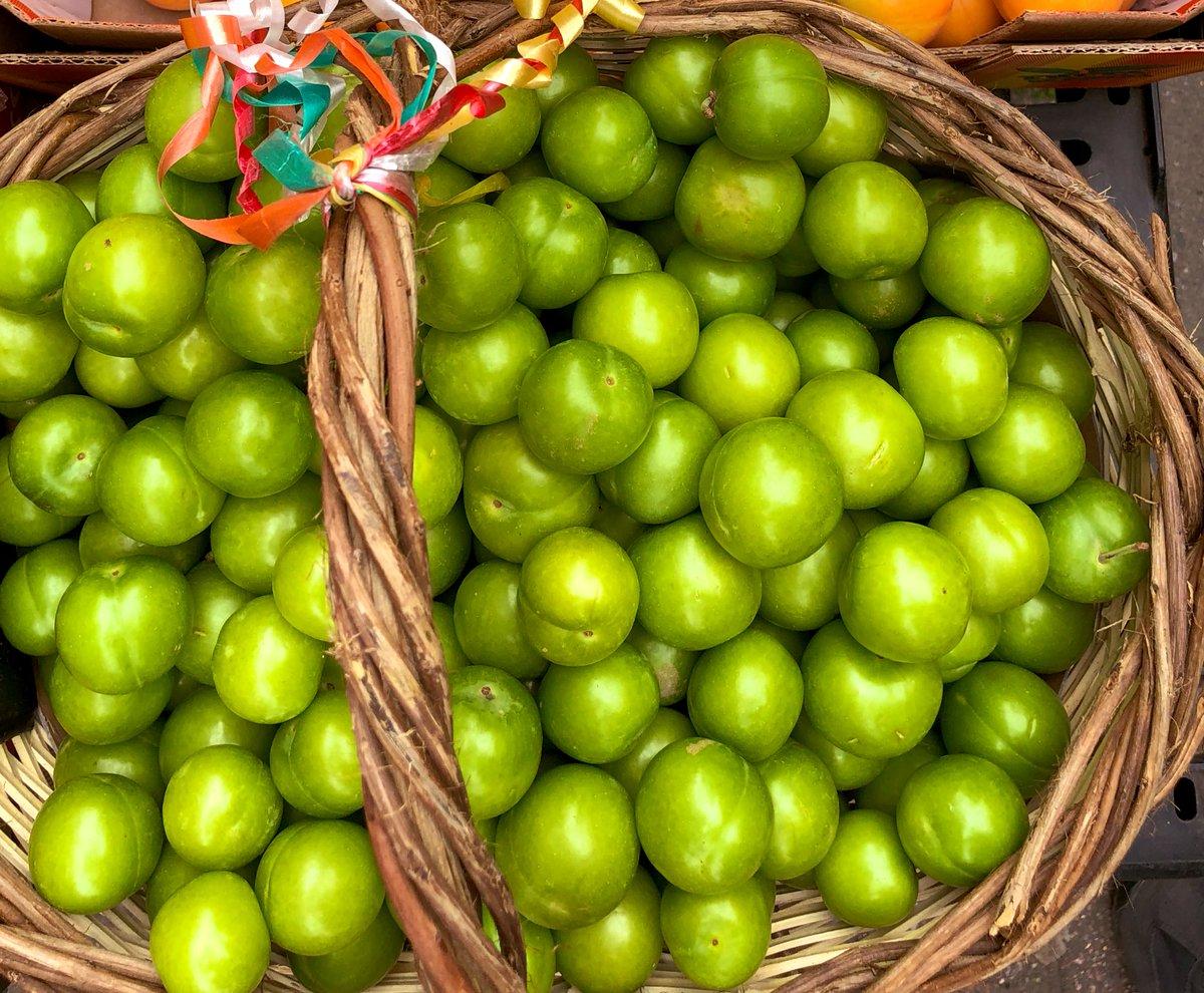 Hamilelere müjde! Yaz aylarının ekşi lezzeti erik hasadı başladı, kilosu 30 liraya düştü