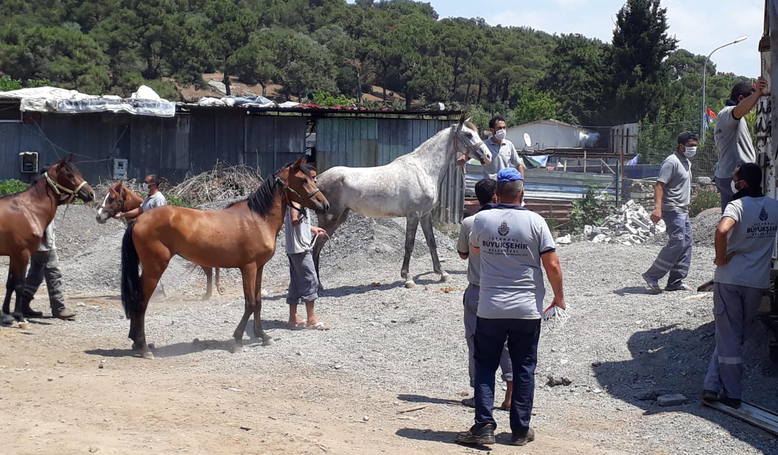 Son dakika  İBB'nin kayıp atları istifa getirdi! Dörtyol Belediye Başkanı Fadıl Keskin istifa etti