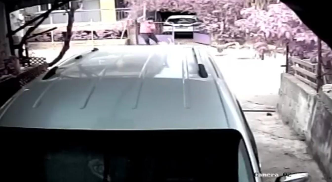Taş attığı kazların saldırısına uğrayan bir kişi yere düşüp sürüklendi