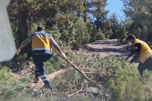 Sağlık ekiplerinin hastaya ulaşma çabası! Yolu kapatan odunları kaldırdılar