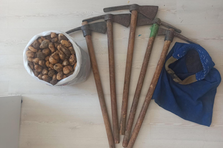 Elazığ'da kaçak salep soğanı toplayan kişilere para cezası uygulandı