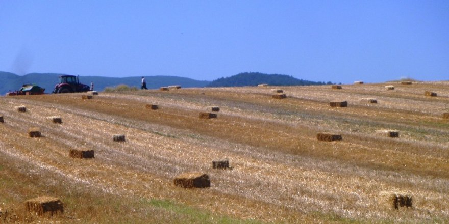 Bilecik'te saman üretimi başladı