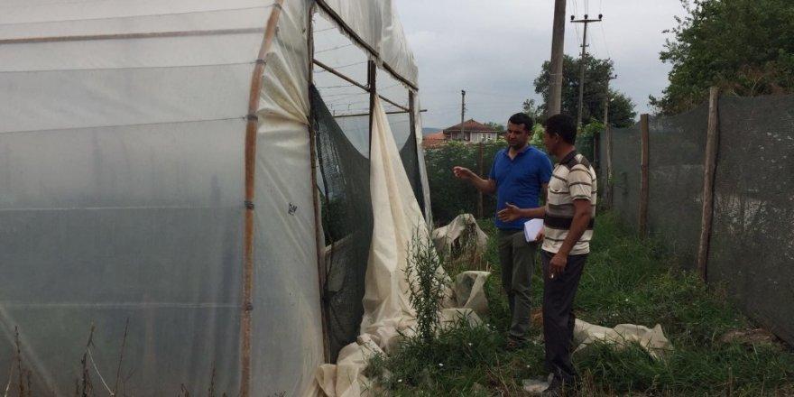 Serası hasar gören üreticilere Büyükşehir'den destek