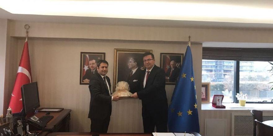 GKV'li Yöneticiler AB Bakan Yardımcısı Ali Şahin'i ziyaret etti