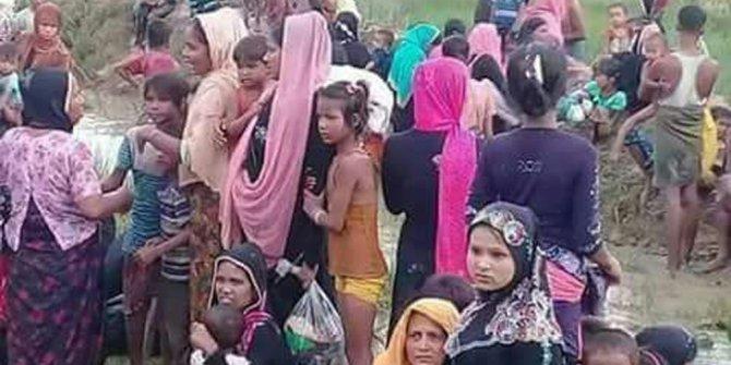 Bangladeş'e sığınan Arakanlıların sayısı artıyor