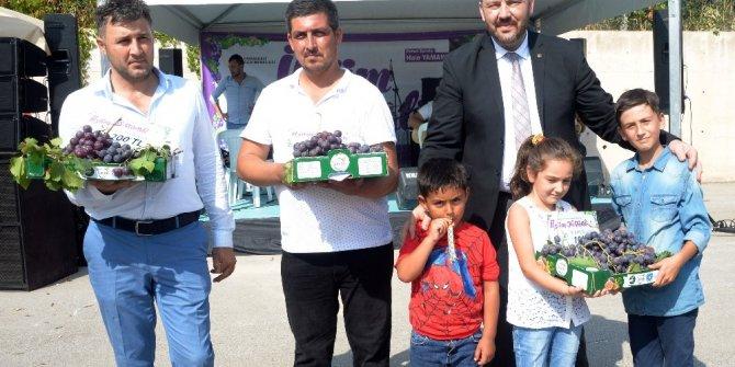 Osmangazi'de Üzüm Festivali coşkusu