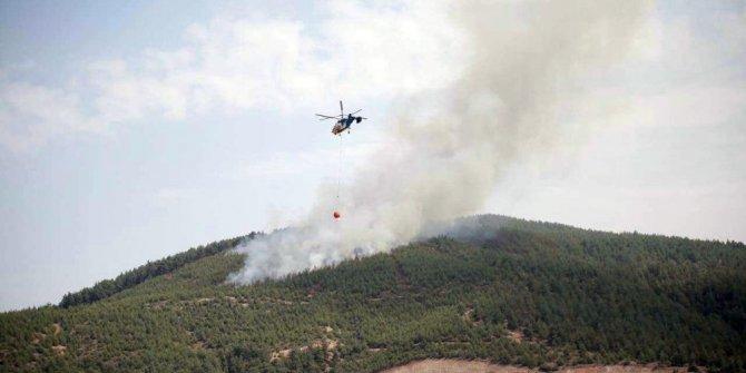 Denizli'deki orman yangınında yaklaşık 10 hektarlık alan yandı