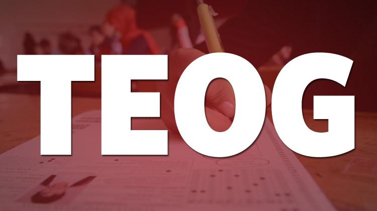 TEOG Sınavına 8 Alternatif