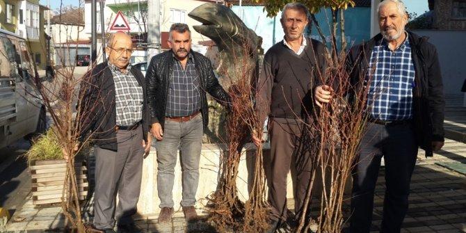 Nilüfer Belediyesi'nden çiftçiye meyve fidanı