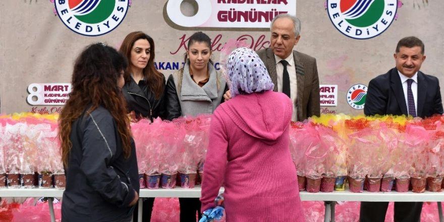 Kepez'den kadınlara 20 bin sümbül