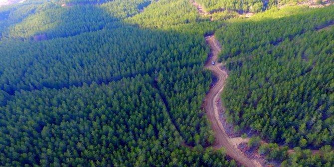 Kütahya'da orman yangınlarına karşı müdahale cepheleri oluşturuluyor