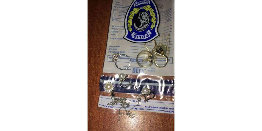 Ordu'da hırsızlık: 2 tutuklama